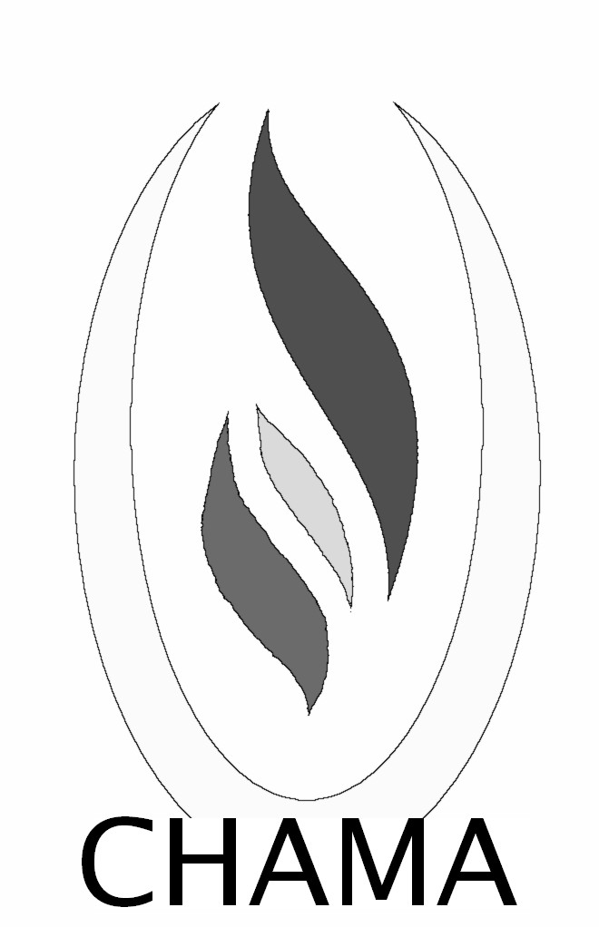2007 - logo N&B